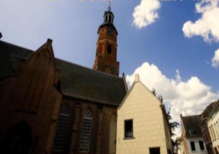 荷兰商学院工商管理硕士学位项目