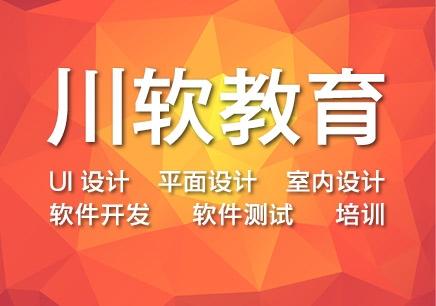 成都Asp网站开发工程师