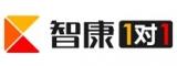 南京智康1对1