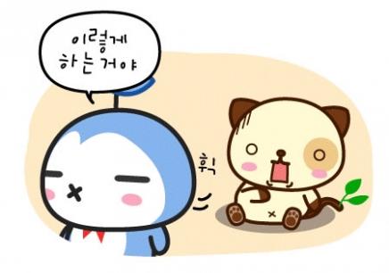 与可爱韩语怎么说