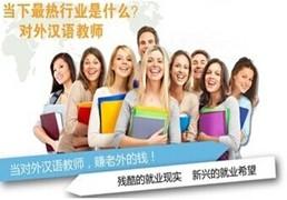 成都武侯区对外汉语教师培训教程