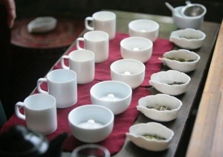 高级茶艺师专修班