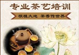 南宁茶艺师培训招生