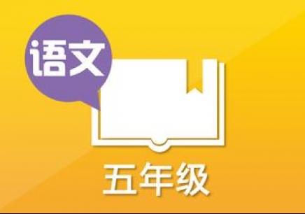 贵阳小学五年级语文补习