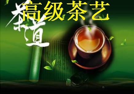 宁波高级茶艺辅导班