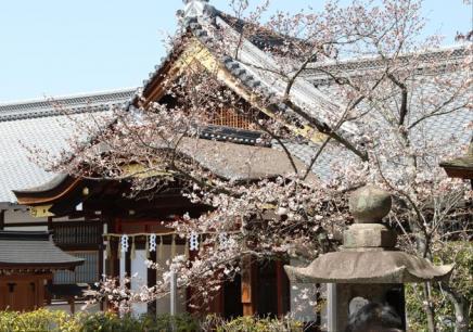 无锡日语培训机构