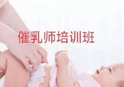 泰州催乳师招生简章