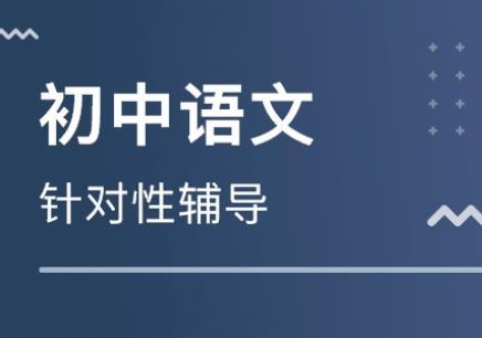 沈阳初中语文记叙文辅导,沈阳沈河区中学生补习班,沈阳领航初中教育
