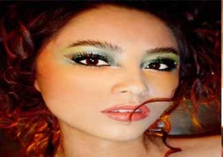 化妆师眼影色彩搭配图
