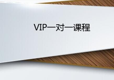 哈尔滨VIP一对一