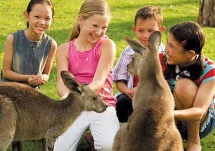 南昌哪里有澳大利亚游学营培训中心