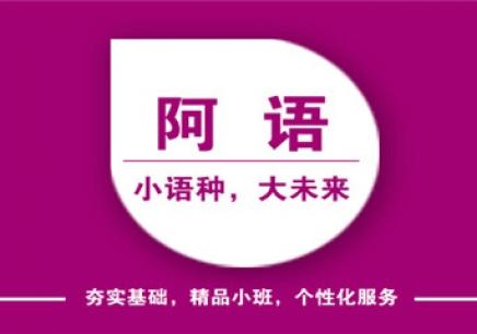 宁波商务阿拉伯语培训