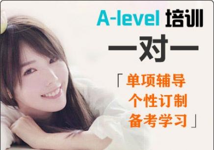 A-level一对一课程
