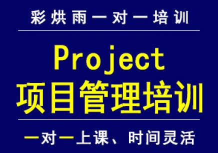 project项目管理软件