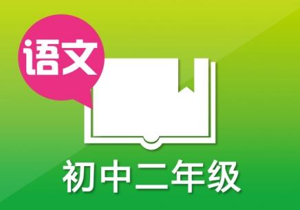 常州初中语文一对一辅导班