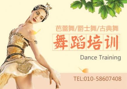北京成人芭蕾一对一学习班