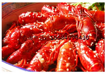 【长沙口味小龙虾培训】_长沙龙虾烹饪培训_长沙湘味