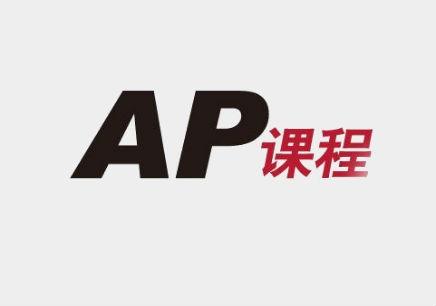 长春AP备考精讲单项班全日制班