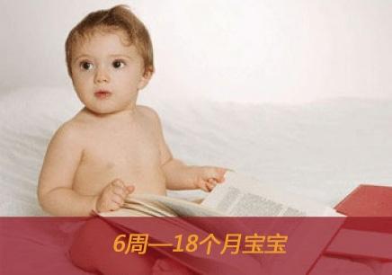 宝贝皇家幼儿园(年龄6周到18个月)