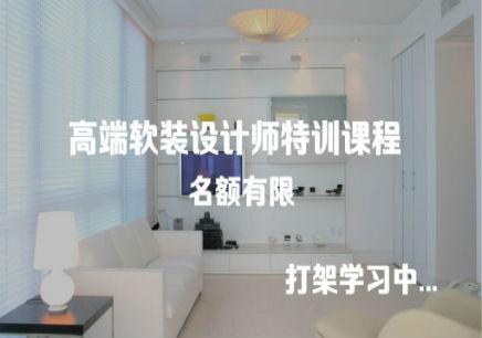 室内设计师造型