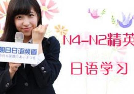 N4-N2精英综合日语班