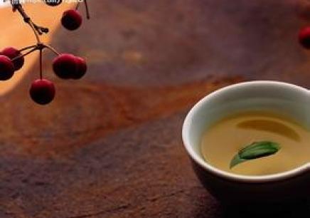 初中高级茶艺等级培训