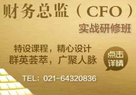 财务总监(CFO)实战研修班
