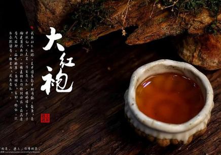 """茶艺师——让心灵去""""旅行"""""""