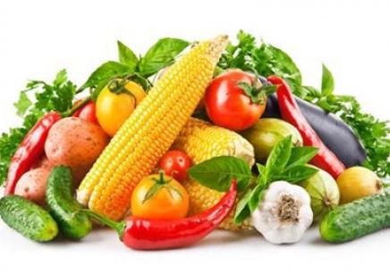 国家职业资格《公共营养师》课程