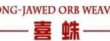 徐州喜蛛3DMAX/CAD设计培训机构