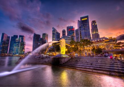 2018冬青青部落·国际营 新加坡双语文化实训营