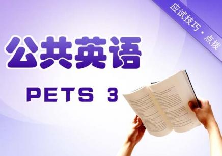 公共英语(PETS)三级班