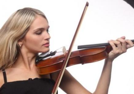 沈阳小提琴周末学习班