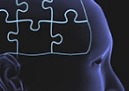 豆豆全脑潜能开发课程