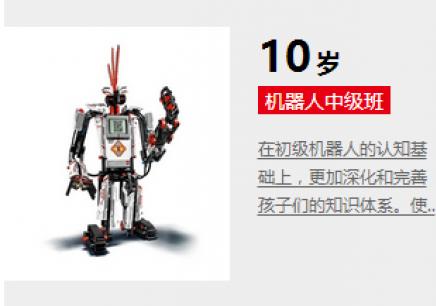 10岁机器人中级班