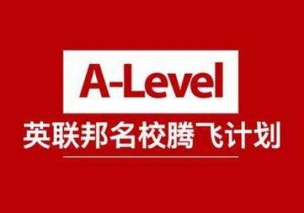 A level课程辅导