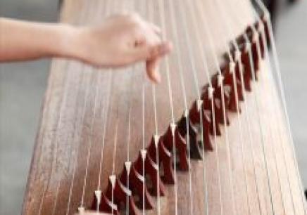 北京海淀 成人女生学什么乐器