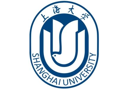 上海大学《项目管理》自考本科