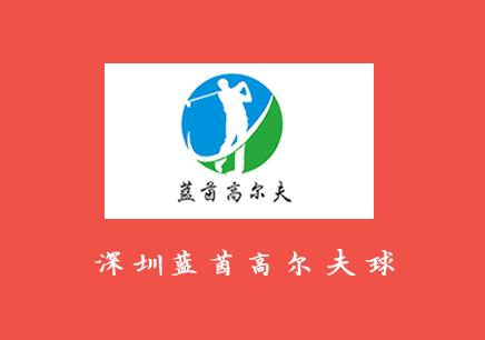 深圳坪山好的高尔夫培训机构