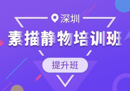 深圳绘画学习网站