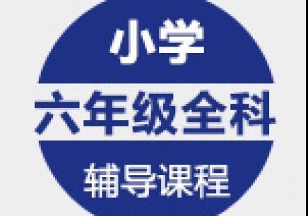 青岛六年级全科培训
