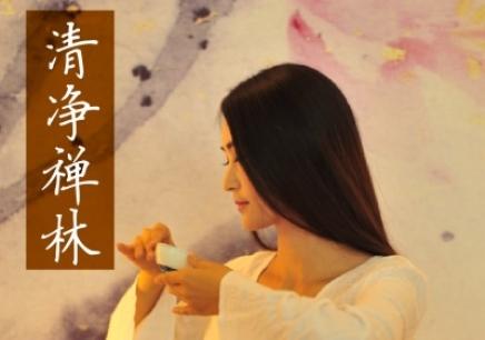 南京茶艺零基础兴趣班