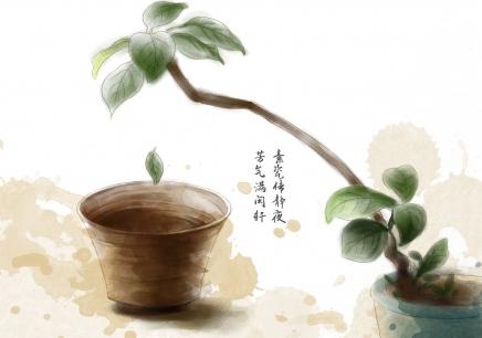 南京高级茶艺师培训