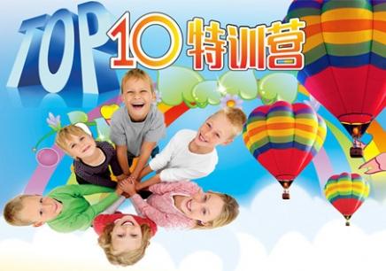 TOP10学习