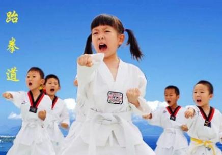 无锡跆拳道培训