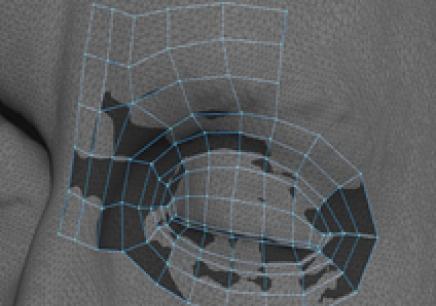 上海的VR虚拟现实辅导