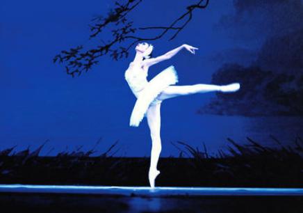 洛阳芭蕾舞机构