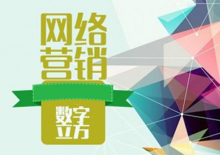 天津哪里有专业的网络营销实战班
