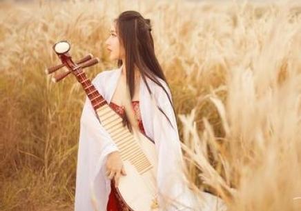 广州琵琶培训班