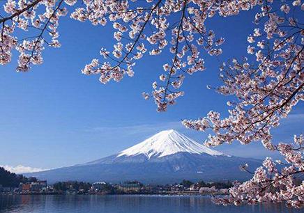 日本短期游学营